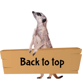 Meerkat holding sign saying Back to Top