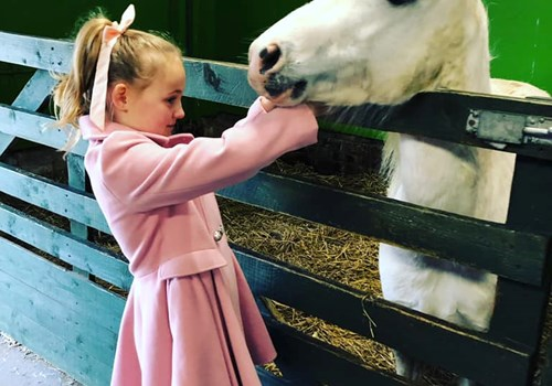 Girl in Pink Coat and Horse